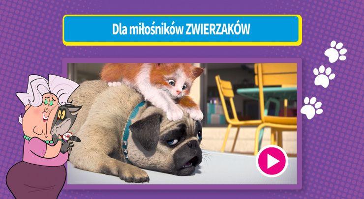 Boomerang Zabawa - Zrzuty z ekranu  7