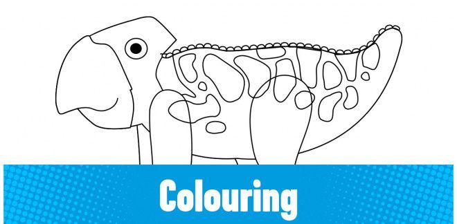 Colour-in the Udanoceratops