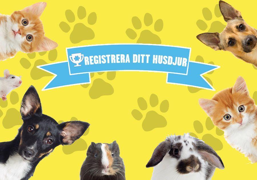 Registrera ditt husdjur