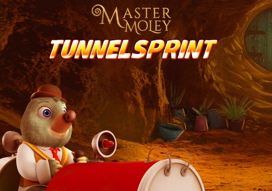 Master Mulle - Tunnelsprint