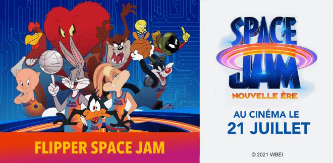 Flipper Space Jam