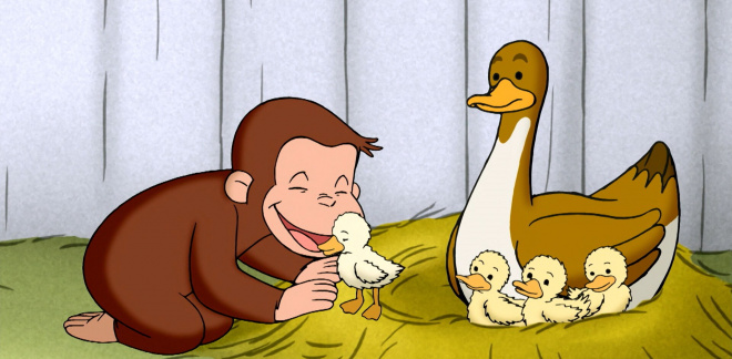 Baby duckling loves George - Curious George